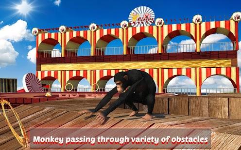 Goat-Monkey-Stunts 7