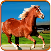 Horse Racing Offroad Derby