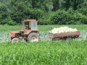 Photo: Day 74 - Work Underway in a Field