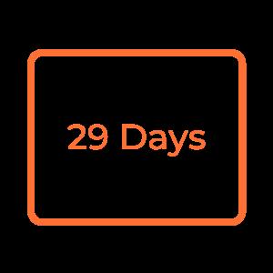 29 Days ROI