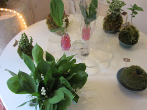Photo: table avec créations kokedamas et muguet