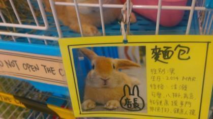 C:\Users\loverabbit\Desktop\港澳\香港兔子餐廳\新增資料夾\IMAG2537.jpg
