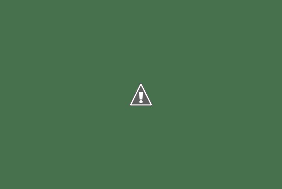 Zuleide Faria de Mello: 86 anos de lutas