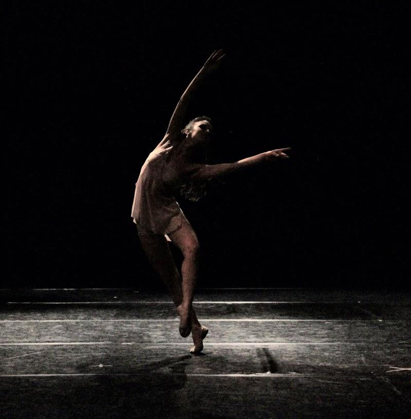 le doti di una ballerina  richieste di smpaint
