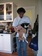 Photo: Handfuls of cats.