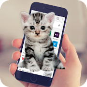 App Cat Walks In Phone Funny Joke - Cute Joke APK for Windows Phone
