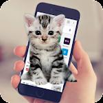 Cat Walks In Phone Funny Joke - Cute Joke Icon