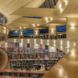Immersed in Knowledge by Andrius La Rotta Esquivel - Buildings & Architecture Other Interior ( library, bogota, architectural detail, amazig, buildings, photo, photographer, photography, colombia, architecture )