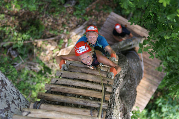 Tree ladders climbs in Thai'd Up Adventure Park
