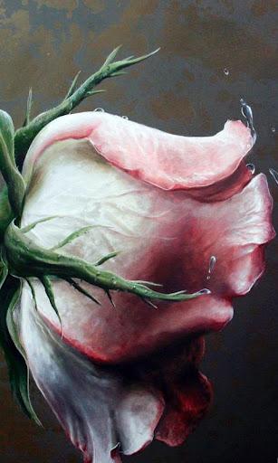 Lwp 美麗的玫瑰