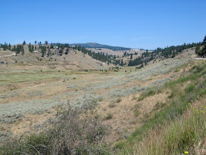Photo: A view along the road from Oroville to Molson