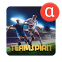 Team Spirit - Football Manager icon
