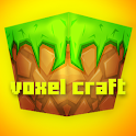 Voxel Craft : Castle Build PE icon