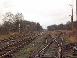 Photo: Rozjazdy w zachodniej części stacji