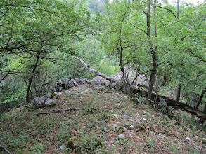 Photo: 13.Widok ze ścieżki powyżej jaskini, gdzie poszedłem już tylko z tatą. Nigdzie nie mogliśmy znaleźć dalszego szlaku, ale z boku jaskini znaleźliśmy wydeptaną ścieżkę, która bardzo stromym zboczem doprowadza do znakowanego szlaku.