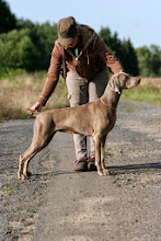 Photo: Angie RoyalSplendour of Daim Weim