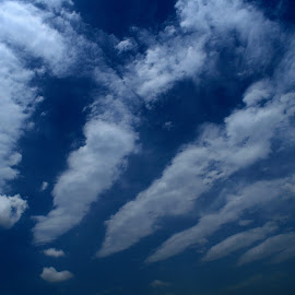Clouds by Tahir Sultan - Landscapes Cloud Formations ( blue sky, pattern, clouds,  )