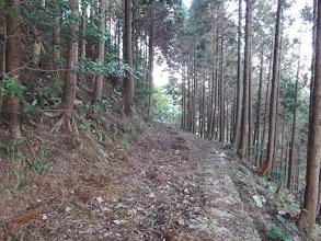 林道は荒れている