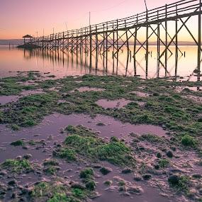 the bamboo bridge by Jan Robin - Landscapes Sunsets & Sunrises ( nature, seascape, sunrise, bridge, landscape )