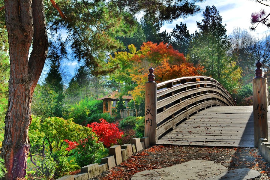 East Gresham Park by Matthew Bryce - City,  Street & Park  City Parks ( wood, park, rock, landscape, woods, leading lines, wooden, tree, color, fall, path, trees, walkway, bridge, gazebo,  )