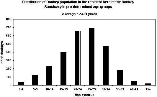 Graph showing the distribution of ages of donkeys at the Donkey Sanctuary.