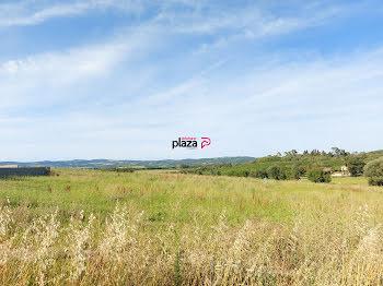 terrain à Gaja-et-Villedieu (11)