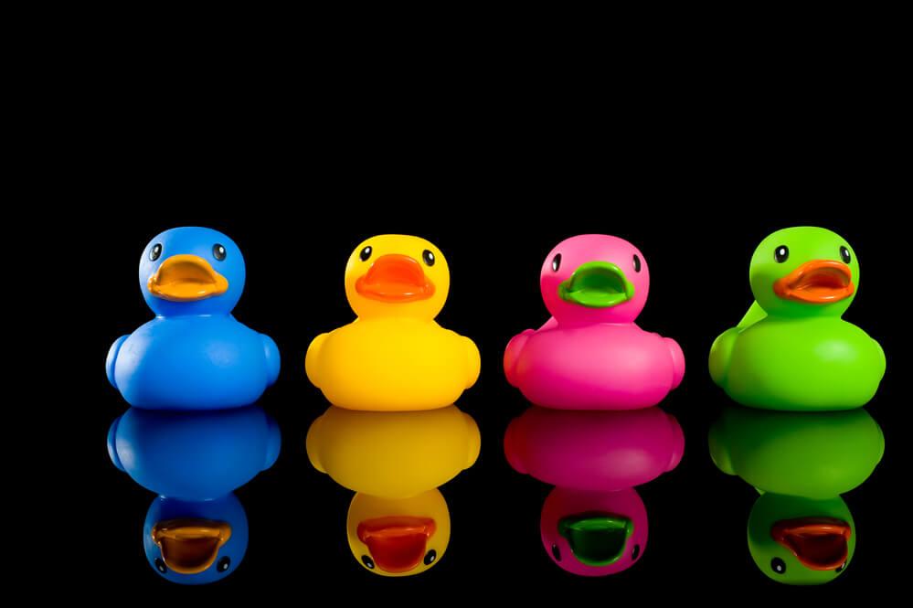 coloured plastic ducks in a row