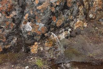 Photo: Чудо природы ,струйка воды бьёт прямо из гранитной скалы