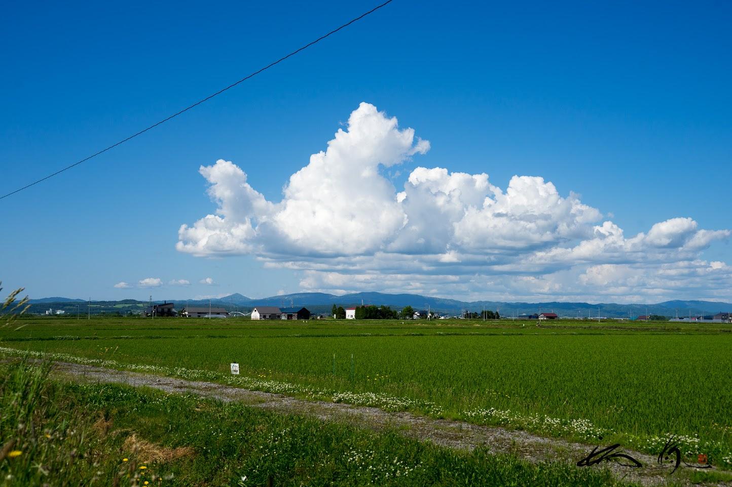 「がんばれよ〜」と声援する空の雲さん