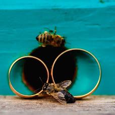 Wedding photographer Andrey Cheban (AndreyCheban). Photo of 04.01.2019