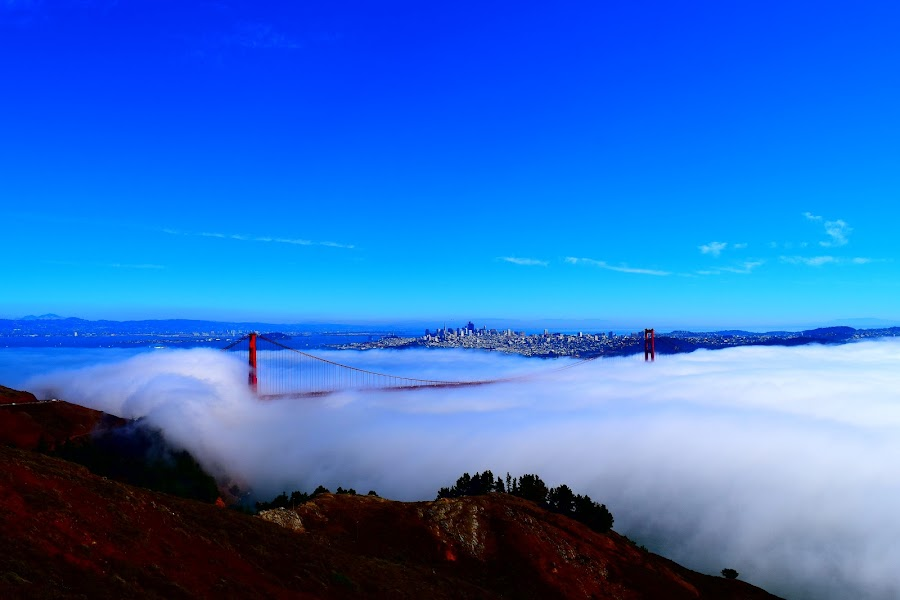 Foggy day over the Golden Gate Bridge in San Francisco  by LaDonna McCray - Buildings & Architecture Bridges & Suspended Structures ( foggy, golden gate bridge, california, bridge, landscape, san francisco, historic, city,  )