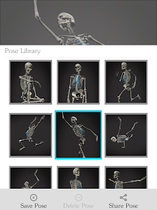 Skelly MOD (Cracked): Poseable Anatomy Model 10