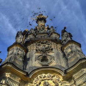 Holly Trinity Column Olomouc by František Valčík - Buildings & Architecture Architectural Detail