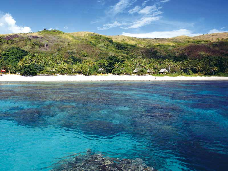 Photo: Incredible coral reefs perfect for snorkeling