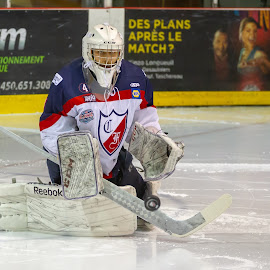 Save!!! by Yves Sansoucy - Sports & Fitness Ice hockey ( hockey, goalie, game, pads, glove, save, puck, ice, sport )