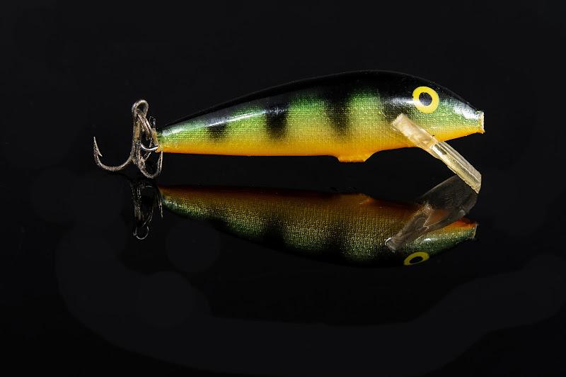 Coda pungente di Yuma