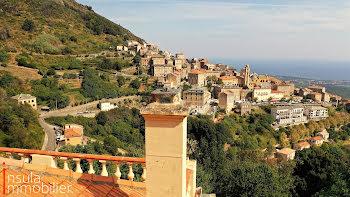 villa à Cervione (2B)