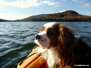 Photo: I love this kayak trip at Stillwater State Park by Justin Lajoie
