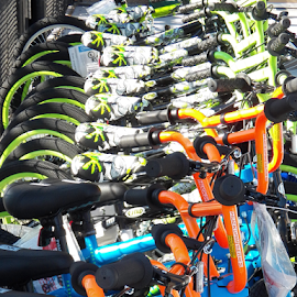 All in a Row by Leah Zisserson - Transportation Bicycles ( orange, sale, green, bikes, blue, store,  )