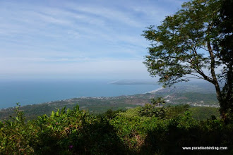 Photo: Matanchen Bay from Tecuitata summit