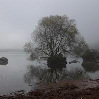Lago nella nebbia di