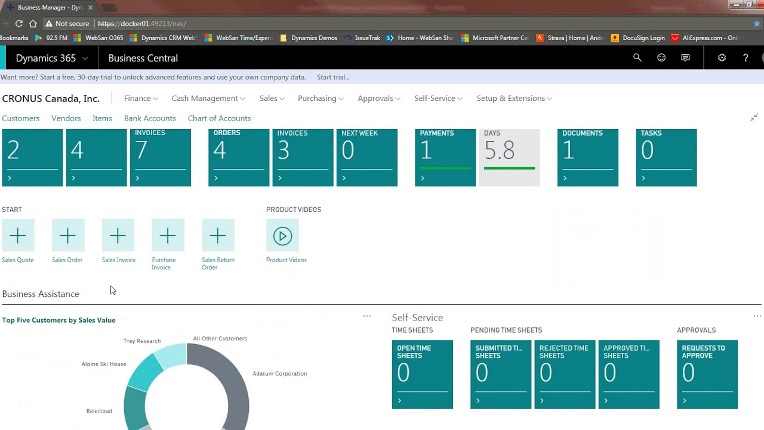 Microsoft Dynamic 365 Business Central  business management solution.
