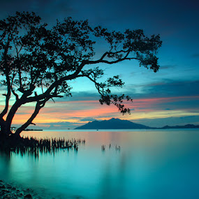 Tree at Nangahale Beach by Marcell Boli - Landscapes Waterscapes ( tree, sunset )