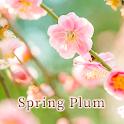 Flower Wallpaper Spring Plum Theme icon