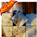 Tap & Turn: Cats & Kittens icon
