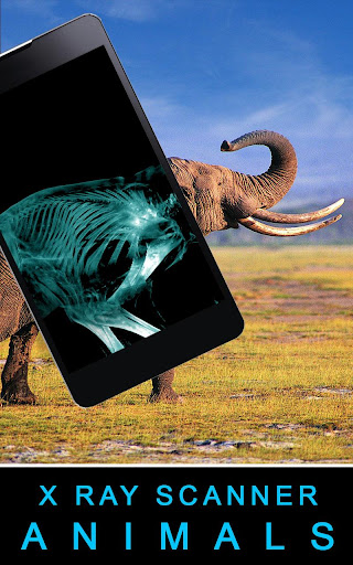 Xray Scanner Animals Prank screenshot