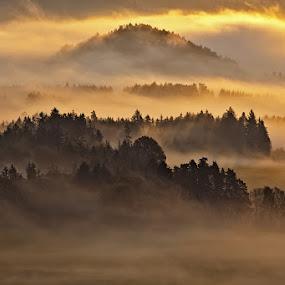 first Light by Evžen Takač - Landscapes Sunsets & Sunrises ( inversion, mountains, czech switzerland, fog, inversion., czech republic, trees, czech switzerland national park, forest, sunrise, sun, fields )