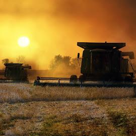 Harvest Time by Peter Stratmoen - Landscapes Prairies, Meadows & Fields ( farmer, autumn, combine, harvest, d5, nikon )