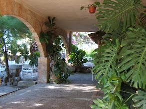 Photo: Bar am Ortsausgang von Santa Margalida in Richtung Can Picafort ( siehe auch www.es-coscois.de )