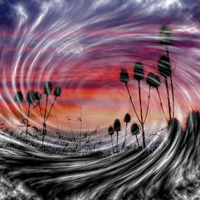 Autumn by JCstudios by John Cuthbert - Print & Graphics All Print & Graphics ( office, wind, jcstudios, canvas, bedroom, wall art, colour, sky, color, autumn, sunset, lounge, weather, cloud, sunrise, rain )